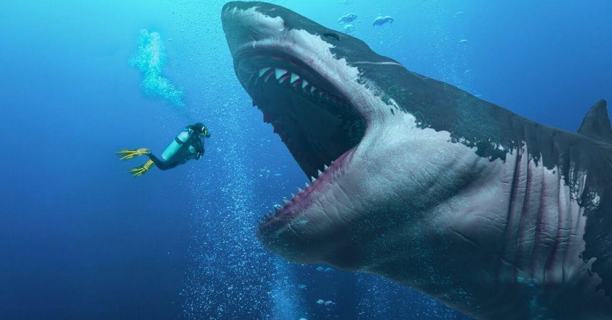 Der Größte Hai Der Welt Megalodon