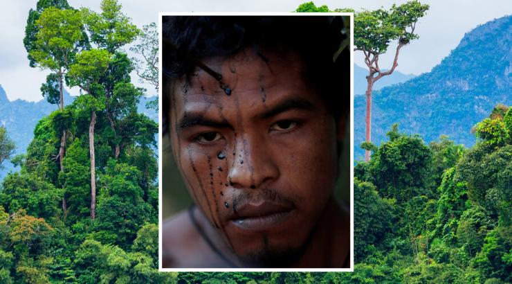 IIlegale Holzfäller ermorden Amazonas-Stammesführer