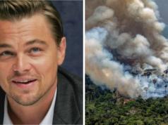 Brände im Amazonasgebiet